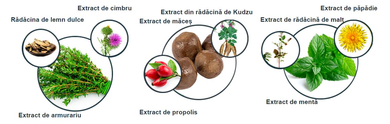 alkotox ingrediente